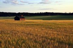 Landschap in Zweden Stock Foto