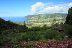 The landschape near Povoacao, Azores Stock Photos