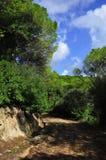Landschappen Stock Fotografie