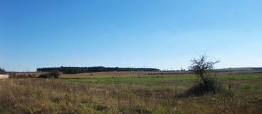 landschappen stock foto