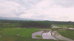 Landschappen bij Pekalongan-Stad stock video