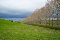 Landschappen in Nieuw Zeeland Stock Foto's