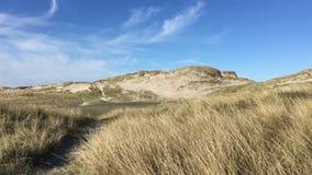 Landschappen van Denemarken stock videobeelden
