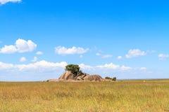 Landschappen van Serengeti Wolken en stenen op eindeloze vlakte Tanzania, Afrika Stock Foto