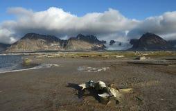 Landschappen van Svalbard/Spitsbergen royalty-vrije stock fotografie