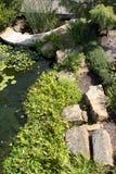 Landschappenontwerp in arboretum royalty-vrije stock afbeelding