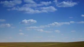 Landschaps blauwe hemel met wolken die over het gebied lopen Horizon van het gebied, schot van een afstand De versnelde video de  stock footage