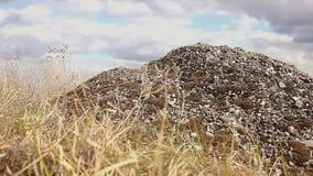 Landschaps droog grint, de slingeringen van het steengras in de beweging van de windaard stock footage