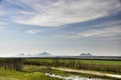 Landschaps groen gebied en blauwe hemel Stock Afbeelding