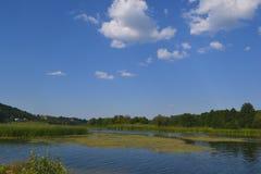 Landschaps mooie rivier in de zomer Royalty-vrije Stock Afbeeldingen