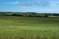 Landschaps mooie weiden Royalty-vrije Stock Fotografie
