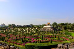 Landschaps tropisch park van Nong Nooch in Pattaya, Thailand Royalty-vrije Stock Afbeelding