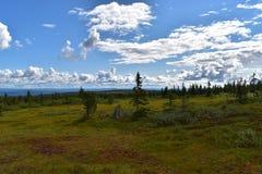 Landschapsbeeld in de provincie Noorwegen van Løten Hedmark Royalty-vrije Stock Afbeeldingen