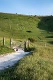 Landschapsbeeld van het oude krijt snijden bij de hellings Lange Mens als Royalty-vrije Stock Foto