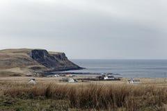 Landschapsbeeld van verre bergen en croftersplattelandshuisjes, Eiland van Skye, Schotse Hooglanden stock foto
