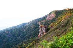 Landschapsberg en bos in de aard met wolk, Mensen die in het groene bos en de grote berg lopen die dat goed voelen Royalty-vrije Stock Foto