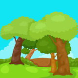 Landschapsbomen in de wildernis Royalty-vrije Stock Fotografie