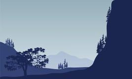 Landschapsboom in berg Stock Afbeeldingen