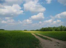 Landschapsfoto met de achtergrond van de perspectieven op de weg op een zonnige dag op een gebied als bron voor ontwerp, druk Stock Afbeelding