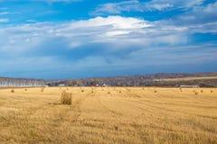 Landschapsfoto van gerold hooi op een gebied Royalty-vrije Stock Afbeeldingen