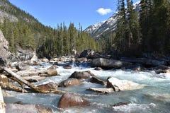 Landschapsfoto van water het lopen Stock Foto's