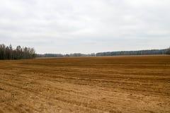 Landschapsgebied, bruin opgegraven land met bedden, voren voor het ploegen, het zaaien korrel op een achtergrond van bos en blauw stock fotografie
