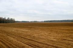 Landschapsgebied, land voor het ploegen met gewassen op de achtergrond van fores stock foto