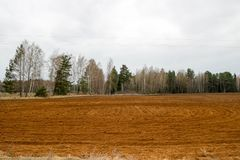 Landschapsgebieden, land met bedden, voren voor het ploegen met gewassen op de achtergrond van het bos royalty-vrije stock fotografie