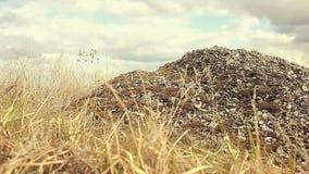 Landschapsgrint, slingeringen van het steen de droge gras in de beweging van de windaard stock footage