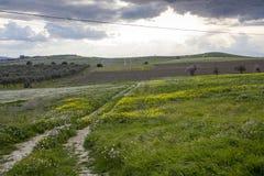 Landschapsland Stock Afbeeldingen