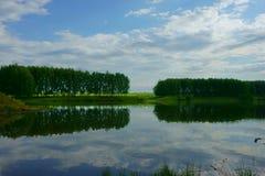 Landschapsmeer, bos, hemel Royalty-vrije Stock Fotografie