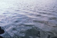 Landschapsmeer Textuur van water Het meer is bij dageraad De mond Stock Fotografie