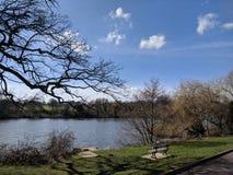 Landschapsmening bij grachtpark, Maidstone, Kent, Medway, het UK het Verenigd Koninkrijk royalty-vrije stock afbeelding