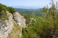 Landschapsmening met hoge witte rotsen en het meest greenforest pijnboomboom stock fotografie