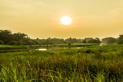 Landschapsmening met zonsondergangtijden Royalty-vrije Stock Afbeeldingen