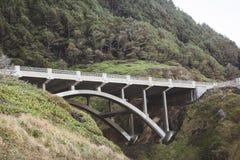 Landschapsmening over de kust van Oregon Stock Afbeelding