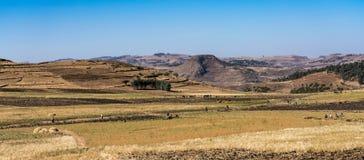 Landschapsmening tussen Gondar en de Simien-bergen, Ethiopi?, Afrika stock foto's