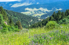 Landschapsmening van de bergen van de Pyreneeën Stock Foto's