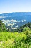 Landschapsmening van de bergen van de Pyreneeën met de mooie kleurrijke weide Stock Afbeeldingen