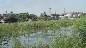 Landschapsmening van grote suikerrietfabriek op rivier Nijl in Egypte stock footage
