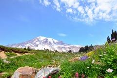 Landschapsmening van MT Regenachtiger tijdens de lentetijd stock fotografie