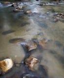 Landschapsmening van rivier in een bos Stock Foto's