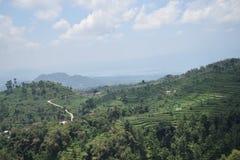 Landschapsmeningen van de groene bergen Stock Foto's