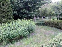 Landschapsontwerp in één van de parken van Moskou stock afbeelding
