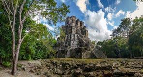 Landschapspanorama van Oude Mayan piramidetempel complex in Muyil, Yucatan Mexico Royalty-vrije Stock Foto