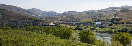 Landschapspeso DA Regua Portugal Stock Afbeelding