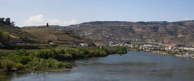 Landschapspeso DA Regua Portugal Stock Foto
