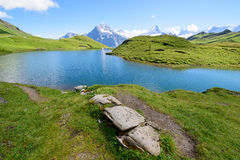Landschapsscène van eerst aan Grindelwald, Bernese Oberland, Swi Stock Fotografie