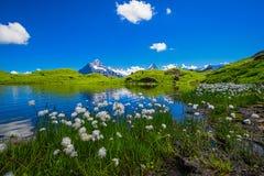 Landschapsscène van eerst aan Grindelwald, Bernese Oberland, Swi Stock Afbeeldingen