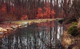Landschapstuin met rode bladeren, gelijkstroom Stock Foto's